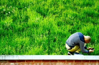 Photograph of create vision photographer Tom Oliver photographing grass in Norwich, Norfolk