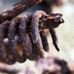 Photograph of rusty scrap metal spring found on wasteland in Norwich, Norfolk
