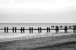 Photograph of Groynes at Corton beach, Lowestoft Suffolk